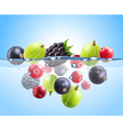 Realistic Colorful Berries Background vector image