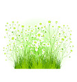 green bush with white flowers vector image vector image