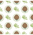 Seamless pattern with pine cones Fir cedar vector image