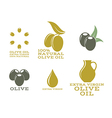Olive oil Isolated labels and icons vector image