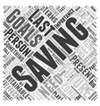 SM importance of saving money Word Cloud Concept vector image