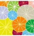 citric pattern vector image vector image