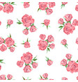 seamless pattern on white background rose flowers vector image