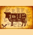 color poster with detailed diagram cutting cows vector image
