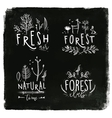 Forest labels chalk vector image vector image