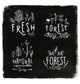 Forest labels chalk vector image