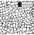 seamless texture of black and white asymmetric vector image