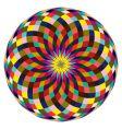 beautiful rosette vector image vector image