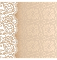 Background with lace square sheet vector image vector image