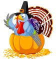 Thanksgving turkey vector image vector image