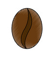 scribble coffee bean cartoon vector image