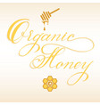 hand drawn lettering organic honey vector image