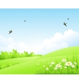 Clean spring amazing scenery vector image vector image