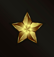 Special Gold Star vector image