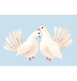 Couple of white doves vector image