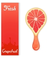 Grapefruit crush juice vector image