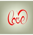 love curly calligraphy sign vector image