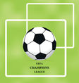 Image of soccer ball on green background brochure vector image