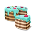 Cake and Cakes piece or pie slice vector image