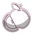 Sticker silhouette apple fruit icon stock vector image