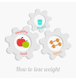 Cogwheel gear set with water apple dumbell vector image