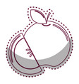 sticker silhouette apple fruit icon stock vector image