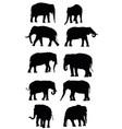 set of black elephants vector image