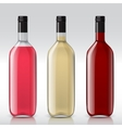 Set of transparent bottles for different wines vector image vector image