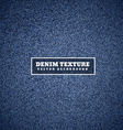 denim texture in blue vector image