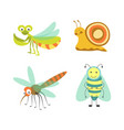 funny insects with cheerful faces isolated vector image