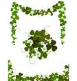 decorative clover vector image