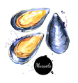 Watercolor hand drawn fresh mussels Isolated vector image