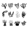 Coral Black Set vector image