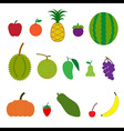 Fruit Cartoon Style vector image