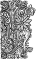 Floral pattern black white vector image vector image