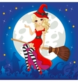 Witch In Red Dress Fly On Broom vector image
