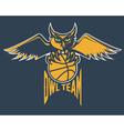 sport basketball emblem owl team vector image