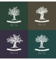 Greek mediterranean olive oil trees set of icons vector image