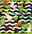 fashion parrots seamless pattern vector image vector image