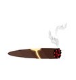 Cigar and smoke on a white background An expensive vector image