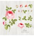 Wedding flowers bundle vector image