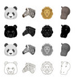 wild animal panda zebra lion hippopotamus vector image