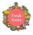 mark sticker sign icon of fresh fruits vector image