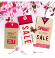 spring sale tags vector image