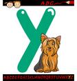 letter y for yorkshire terrier dog vector image