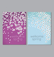 white decorative cherry or apple spring blossom vector image