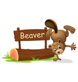 A beaver performing a handstand beside a signboard vector image vector image