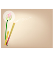 Lotus with Joss Sticks and Candle on Brown vector image