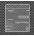 Template Blank Transparent Package vector image