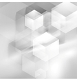 Abstract grey smooth waves and tech cubes vector image